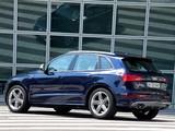 Audi SQ5 TDI (8R) 2013 wallpapers