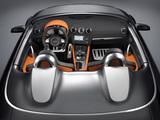 Audi TT Clubsport Quattro Concept (8J) 2007 wallpapers