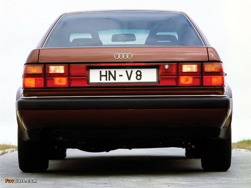 Photos of Audi V8 1988–94 (800 x 600)