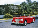 Austin Healey 100 (BN1) 1953–55 pictures