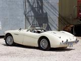 Austin Healey 100 (BN2) 1955–56 images