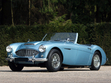 Austin Healey 100/6 (BN6) 1956–59 images