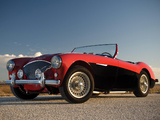 Images of Austin Healey 100 (BN2) 1955–56