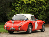 Austin Healey 3000 Rally Car (MkII) 1962 pictures