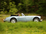 Austin Healey 3000 (MkIII) 1964–68 images