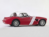 Austin Healey 3000 BJ8 Rally Car (MkIII) 1967 pictures