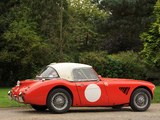 Pictures of Austin Healey 3000 Rally Car (MkII) 1962