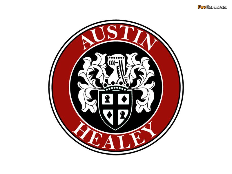 Austin Healey wallpapers (800 x 600)