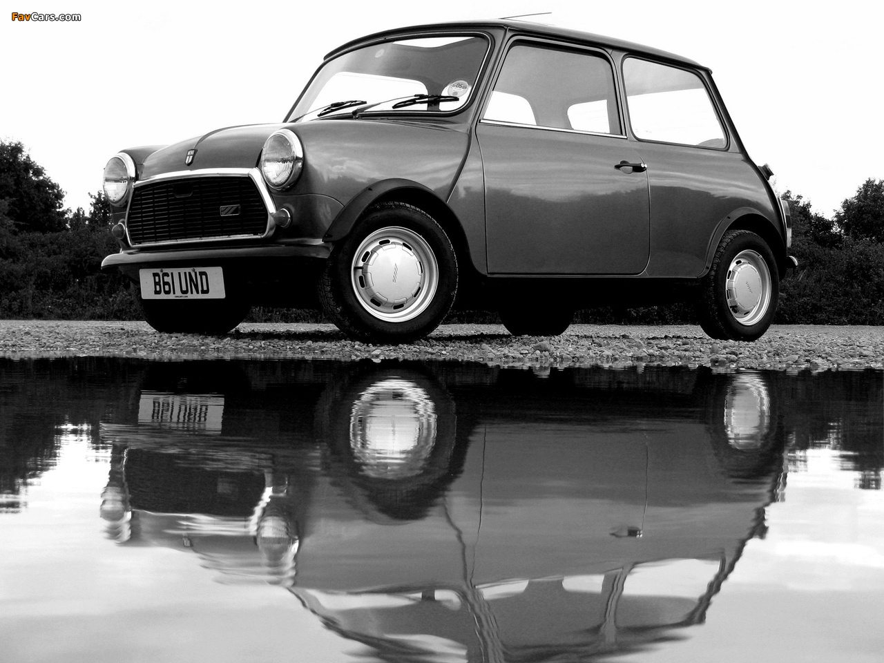 Photos of Austin Mini E (ADO20) 1982–88 (1280 x 960)