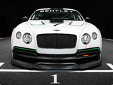 Bentley Continental GT3 Concept 2012 images