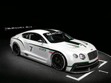 Pictures of Bentley Continental GT3 Concept 2012
