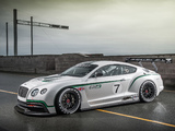 Bentley Continental GT3 Concept 2012 wallpapers
