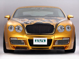 ASI Bentley W66 GTS Gold 2008–10 images
