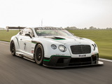 Bentley Continental GT3 2013 images