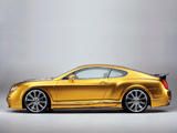 Photos of ASI Bentley W66 GTS Gold 2008–10
