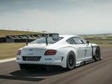 Photos of Bentley Continental GT3 2013