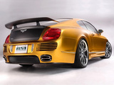 Pictures of ASI Bentley W66 GTS Gold 2008–10