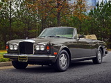 Images of Bentley Continental Convertible 1984–89