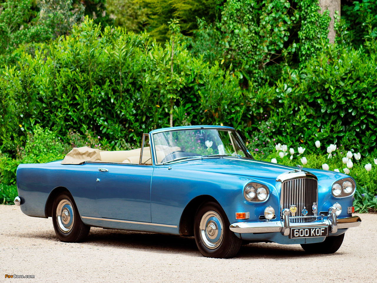 Pictures of Bentley S3 Continental Convertible by Mulliner Park Ward 1962–66 (1280 x 960)
