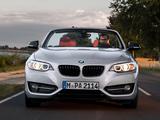 BMW 228i Cabrio Sport Line (F23) 2014 pictures