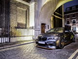 Evolve Automotive BMW M2 (F87) 2016 images