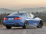 Photos of BMW M3 ZA-spec (F80) 2014