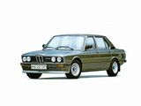 BMW 528i Sedan (E12) 1977–81 pictures