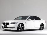 3D Design BMW 5 Series Sedan (F10) 2010 photos