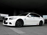 3D Design BMW 5 Series M Sports Package (F10) 2010 wallpapers