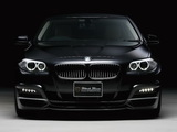 WALD BMW 5 Series Black Bison Edition (F10) 2011 photos