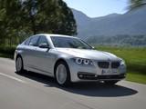 BMW 530d Sedan Luxury Line (F10) 2013 images