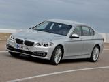 BMW 535i Sedan Luxury Line (F10) 2013 images