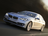 BMW 518d Sedan (F10) 2013 photos