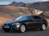 BMW 520i Sedan Luxury Line ZA-spec (F10) 2013 photos