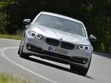 BMW 530d Sedan Luxury Line (F10) 2013 photos