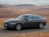 BMW 520i Sedan Luxury Line ZA-spec (F10) 2013 pictures