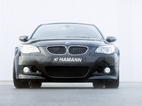 Hamann BMW M5 Widebody Edition Race (E60) images
