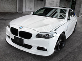 Images of 3D Design BMW 5 Series M Sports Package (F10) 2010