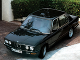 Pictures of BMW 524d (E28) 1986–87