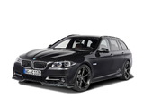 Pictures of AC Schnitzer ACS5 3.5d (F11) 2013
