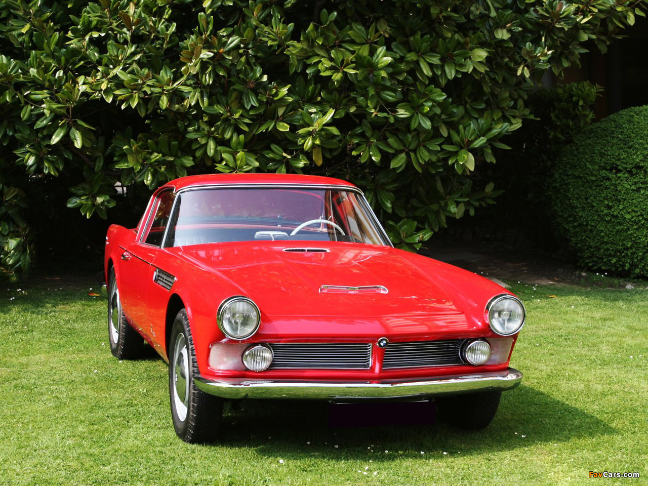 BMW 507 Coupe by Giovanni Michelotti 1959 photos (1280 x 960)