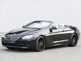 Hamann BMW 6 Series Cabrio (F12) 2011 photos