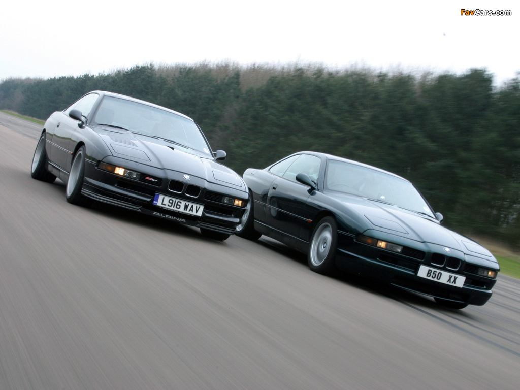 Images of BMW 8 Series (1024 x 768)