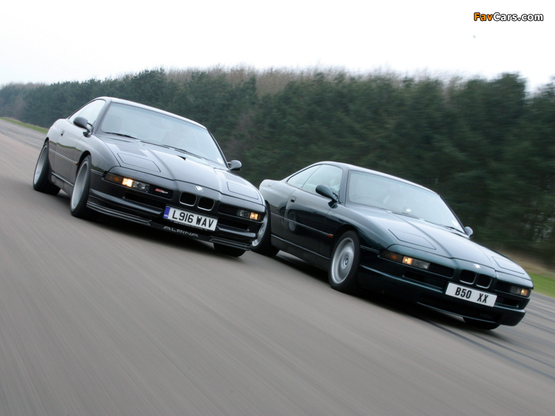 Images of BMW 8 Series (800 x 600)