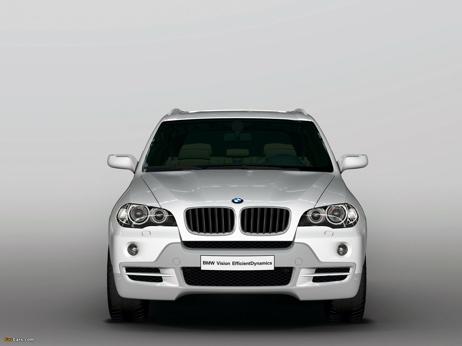 Images of BMW X5 EfficientDynamics Concept (E70) 2008 (1600 x 1200)