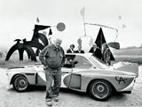 BMW 3.0 CSL Art Car by Alexander Calder (E9) 1975 wallpapers