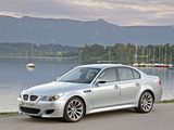 BMW M5 (E60) 2004–09 pictures