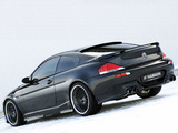 Hamann BMW M6 (E63) photos