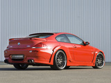 Images of Hamann BMW M6 Widebody Edition Race (E63)