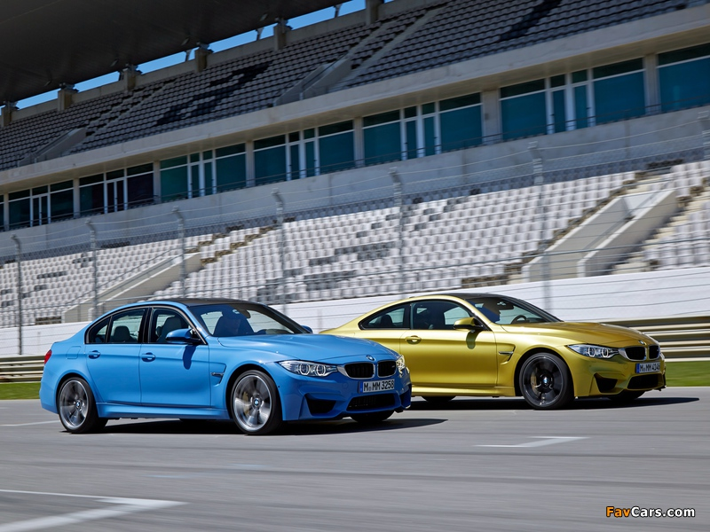 Images of BMW (800 x 600)